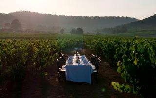 Wine, gastronomy & culture 1