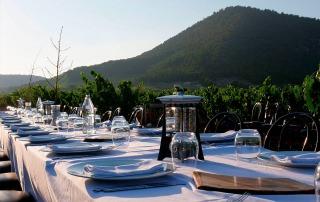 Wine, gastronomy & culture 2
