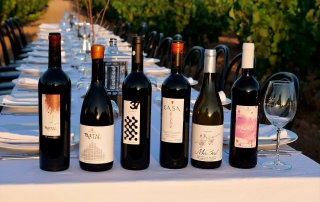 Wine, gastronomy & culture 3