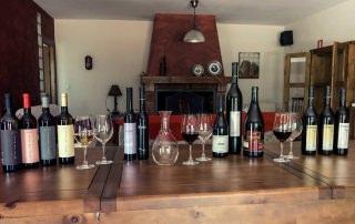 Wine, gastronomy & culture 6