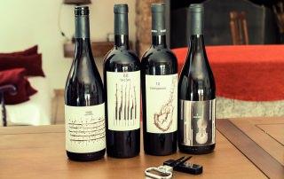 Wine, gastronomy & culture 7